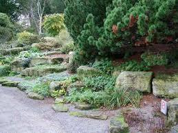 Small Picture Rain Garden Design Examples Native Garden Design images of rock