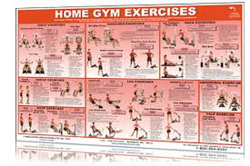 York Home Gym Exercise Chart Home Gym Workout Routines With