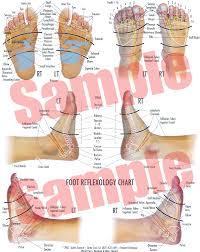 Foot Healing Chart Foot And Hand Reflexology The Tennent Technique Foot