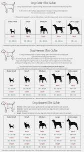 Neapolitan Mastiff Size Chart 78 Inquisitive Mastiff Growth Chart Height