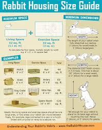 Rabbit Hutch Cage Size Guide Minimum Requirements