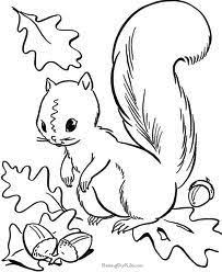Eekhoorn Kleurplaat Herfst Fall Coloring Pages Squirrel