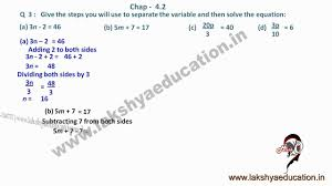 class 7th maths simple equations