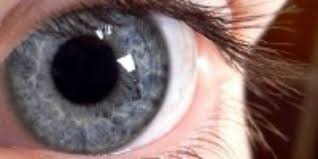 The Meaning Of Pupil Dilation The Scientist Magazine