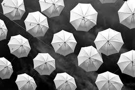 Bellissime Foto In Bianco E Nero