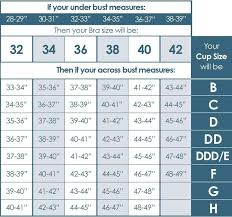 Adore Me Size Chart Best 25 Bra Size Charts Ideas On Pinterest Bra Size