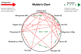 Mulders Chart Nutrient Antagonism Learn How To Avoid Nutrient Deficiancies