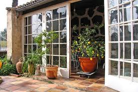 fail with fruit trees in containers