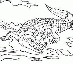 Small Picture Coloring Pages Online Crocodile Coloring Pages Fresh On Model