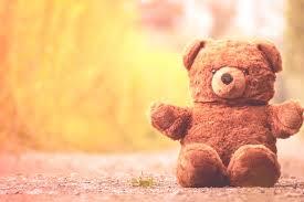 teddy bear furry teddy bear cute soft toy teddy