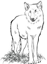 array peter and the wolf coloring pages u2018 lanatz rh lanatz info