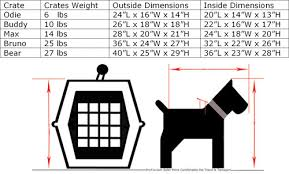 dog crates size chart what size crate for my pet for air travel katsn us