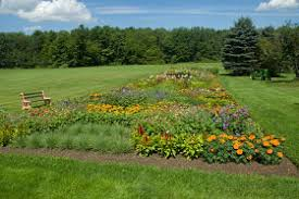 garden designs planting a cut flower southern states cooperative intended for cutting design design