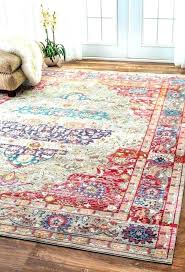 pet proof area rugs dog rug friendly best living room ideas on red pet proof area rugs