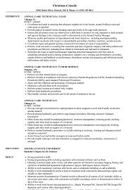 Animal Care Worker Sample Resume Animal Care Technician Resume Samples Velvet Jobs 18
