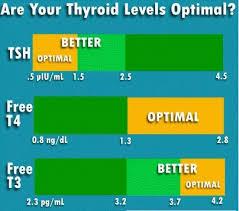 Thyroid Levels Hypothyroidism Hyperthyroidism