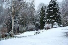 snow backgrounds tumblr. Brilliant Tumblr SnowBackgroundstumblr And Snow Backgrounds Tumblr G