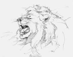 Kleurplaten Van Een Leeuw