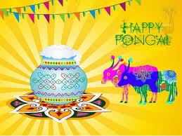 cover letter pongal festival essay pongal festival essay in tamil cover letter thai pongal festival day quotes sms happypongal festival essay