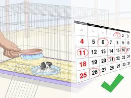 how to clean a guinea pig s fleece bedding