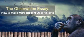 the observation essay how to make more brilliant observations  the observation essay how to make more brilliant observations essay writing