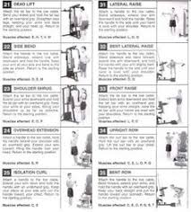 Impex Home Gym Exercise Chart 41 Best Multi Gym Images Multi Gym At Home Gym Gym Workouts