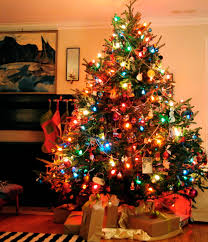Types Of Christmas Tree Lights  Home Design InspirationsTypes Of Christmas Tree Lights