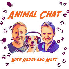 The Animal Chat Podcast
