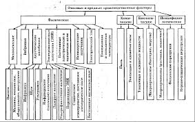 Реферат Охрана труда основные термины понятия определения  Охрана труда основные термины понятия определения