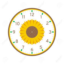 Sunflower Printable Clock Face Template Isolated On White Background