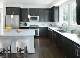 black transitional kitchen design with contemporary black cabinets with stainless steel hardware along with stainless steel