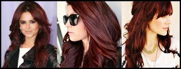 Dark Brown Red Hair Color Chart Brown Hair Colors For Winter 2015 Natural Hair Dye 2018