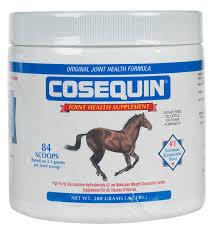 Equine Joint Supplement Comparison Chart Cosequin Equine Concentrate Joint Supplement For Horses