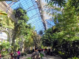 inside the greenhouse there are nearly 29 thousand square feet of growing space