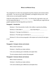 mitosis and meiosis essay by alison crotty teachers pay teachers mitosis and meiosis essay