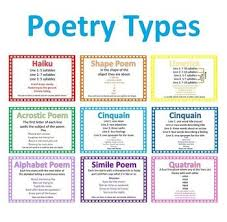 Types Of Poetry Anchor Chart Poetry Lessons Tes Teach