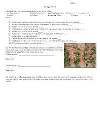 Venn Diagram Of Vascular And Nonvascular Plants Quiz On Plant Life And Vascular And Non Vascular Plants