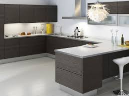 Small Picture Modern Kitchen Cabinets Intended For Household Vookascom