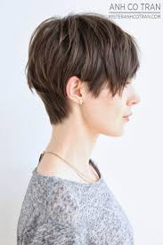 Chopped Hair Style the 25 best pixie cuts ideas short pixie cuts 8162 by wearticles.com