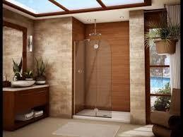 frameless shower doors for small bathrooms