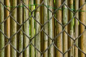 chain link fence wood slats. Exellent Chain In Chain Link Fence Wood Slats D