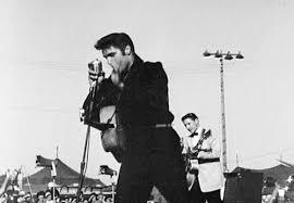 Elvis Presley GIF - Find & Share on GIPHY