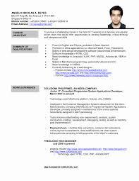 Sample Resume Senior Software Engineer Forms Of Resume Sample Best Of Ap Euro Essay Sample Resume Senior 21