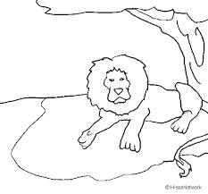 Disegno Di Il Re Leone Da Colorare Acolorecom