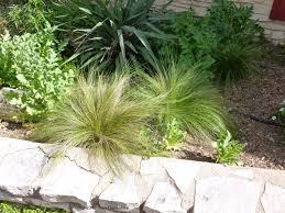 Small Picture Garden Design Software Garden Ideas And Garden Designl mexican