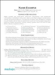 Photography Resume Samples Amazing Photography Resume Examples Simple Resume Format