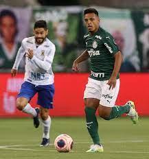 Campeonato Paulista: Palmeiras x Santo André (29/07/2020) - Fotos Publicas