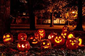 halloween lighting tips. Group Of Candle Lit Halloween Pumpkins In Park On Fall Evening Lighting Tips