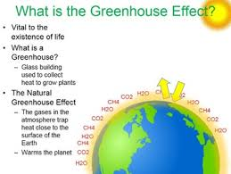 green house effect the greenhouse effect and global warming by beverly biology tpt