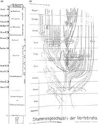 Symbolic Charts A Quaternary Timescale From Igtu Copy